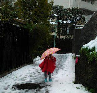大雪の日の園の送迎、どうするべき?注意点や意見のまとめ