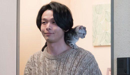 中村倫也の「半分青い」の猫の情報、「飼われたい」の声が殺到